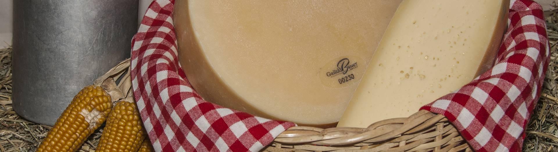 Käse aus Kirchbach in der Naturarena Kärnten