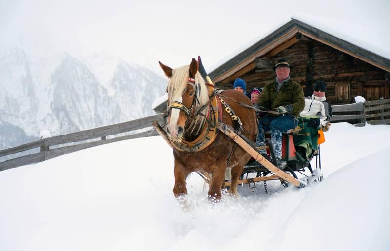 <p>Pferdeschlitten in Apriach Nationalpark Hohe Tauern</p>