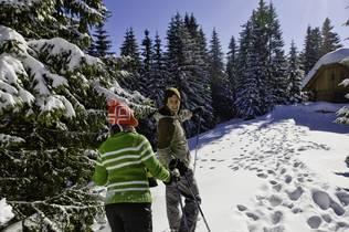 Schneeschuhwanderung zur Almhütte