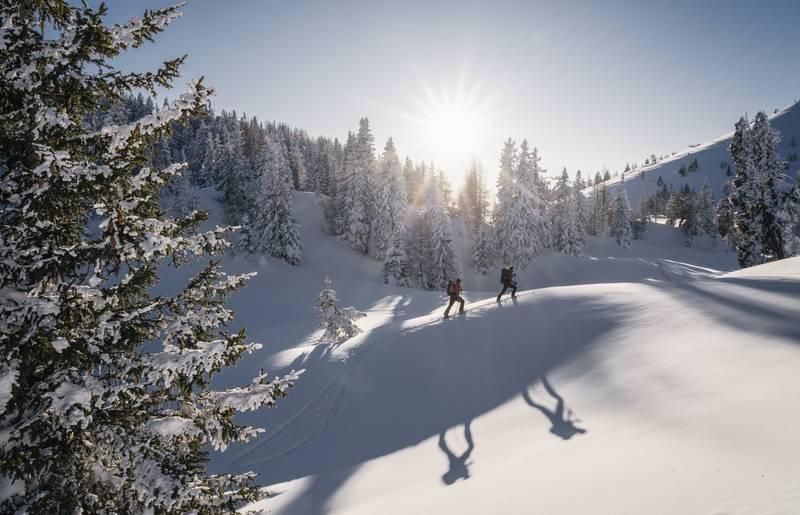 Region Villach Winter NaturparkDobratsch Winter StefanLeitner 2